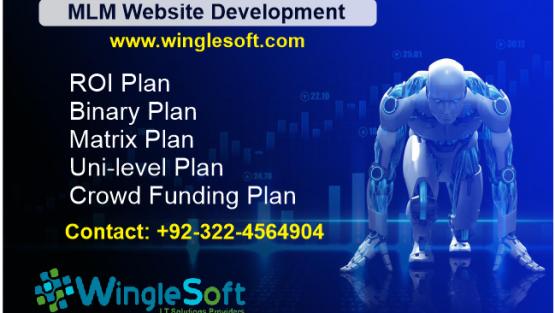 MLM Development Company