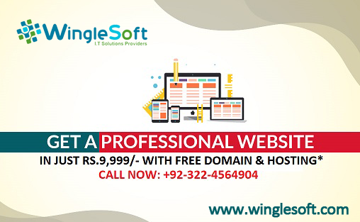 Professional Website For Business